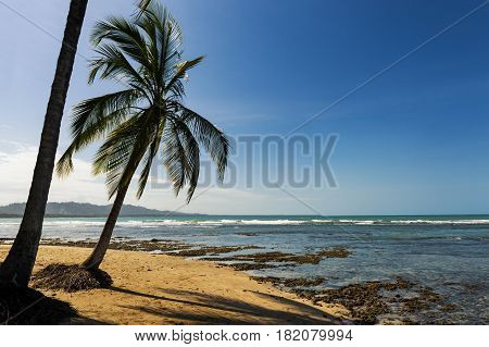 View of the beach with palm trees in Puerto Viejo de Talamanca Costa Rica; Concept for travel in Costa Rica