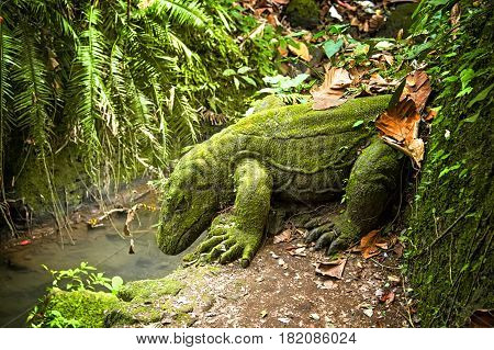 dragon stone sculpture of moss in a tropical forest over the stream, among the roots of trees leaves and grass on the mountain