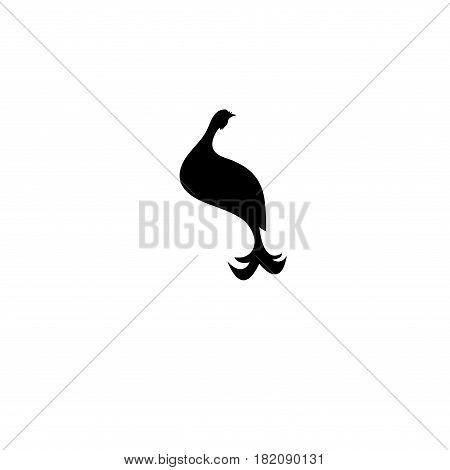 Vector class graphical icon black grouse on white background
