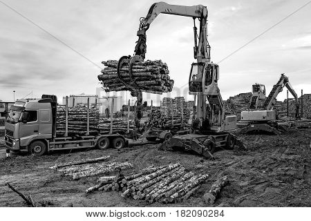 Maritime transportation industry. Cranes at warehouse territory logs are unloaded from the truck.