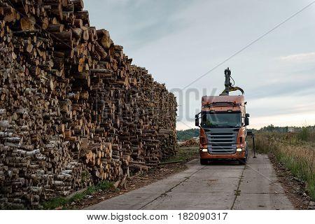 Maritime transportation industry. Truck unloads timber at port warehouse field.