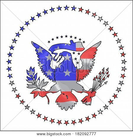 The Stars and Stripes silk flag beneath a silhouette of the USA eagle icon over white
