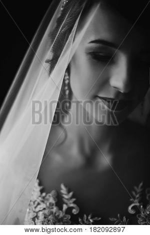 Stylish Bride Portrait Under Veil. Sensual Beauty, Luxury Beautiful Wedding Dress. Rustic Wedding Mo