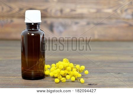 Mimosa essential oil in the bottle and mimosa flowers on wooden background