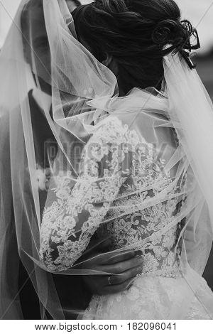 Stylish Happy Bride And Groom Embracing And Hugging Under Veil, Near Retro Car. Luxury Wedding Coupl