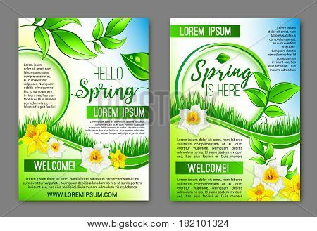Welcome Spring vector posters with yellow daffodils and white narcissus. Springtime flowers bouquet and green blooming nature grass and plants tendrils for spring holidays vector design or greetings