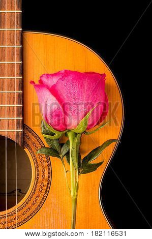 One rose on the old guitar on black  background