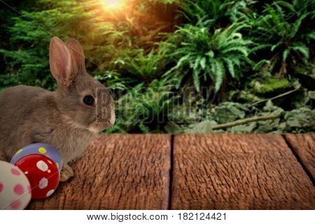 Bunny with polka dot Easter eggs against trees and plants growing in forest