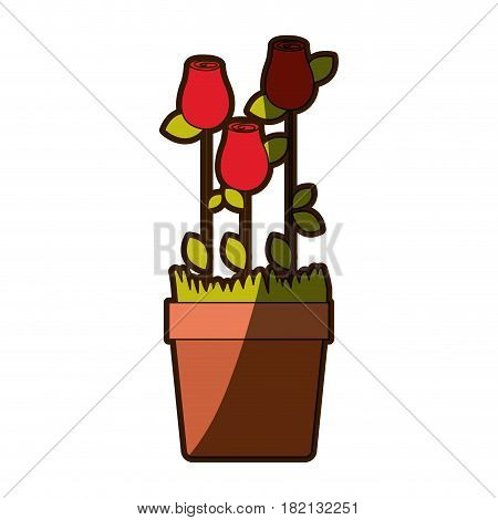 colorful shading silhouette rosebuds planted with leaves in flowerpot vector illustration