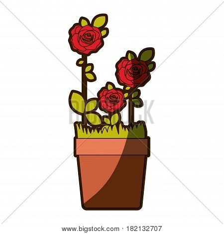 colorful shading silhouette flowered roses planted with leaves in plantpot vector illustration