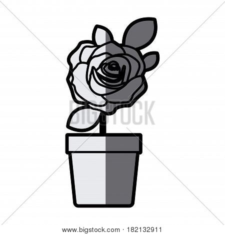 gray scale silhouette flowered rose with leaves and stem in flowerpot vector illustration