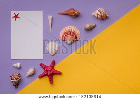 Paper Card Or Invitation With Marine
