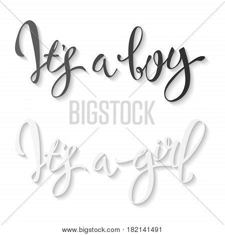 Calligraphy lettering It's a boy It's a girl. Vector hand drawn invitation to the baby shower for a boy and a girl