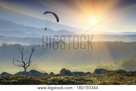 Silhouette Of Flying Paraglide