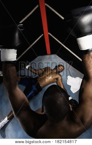 African boxer standing over knocked out opponent