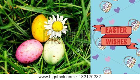 TE252_hndr_easter_frames_mix_2 against small easter eggs nestled in the grass with a daisy