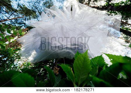 Bottom view of wedding dress hanging on the tree. Abstract overhang wedding dress