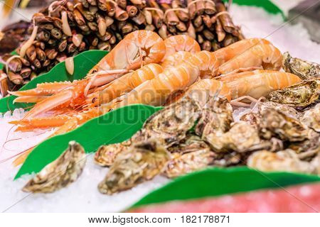 Fresh langoustines, razor clams and oysters at seafood market