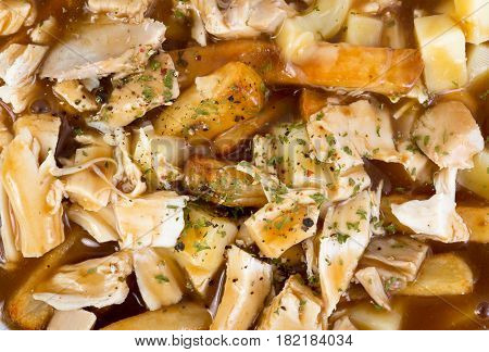 chicken poutine quebec cuisine made with gravy fried cheese curd and chicken closeup