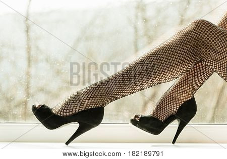 Sexy Female Legs In Black Fishnet Tights On Window Sill