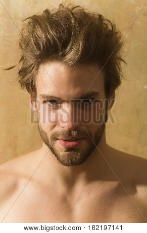 Male beauty and hairdressing. Handsome bearded man with beard or sexy caucasian macho on beige wall background. Stylish blond hair haircut and young unshaven face skin