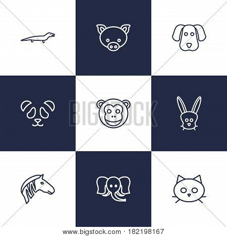 Set Of 9 Beast Outline Icons Set.Collection Of Dog, Cat, Feline Bear And Other Elements.