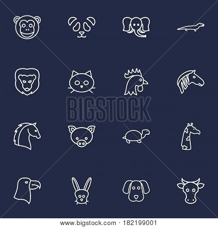 Set Of 16 Brute Outline Icons Set.Collection Of Monkey, Lizard, Cat And Other Elements.