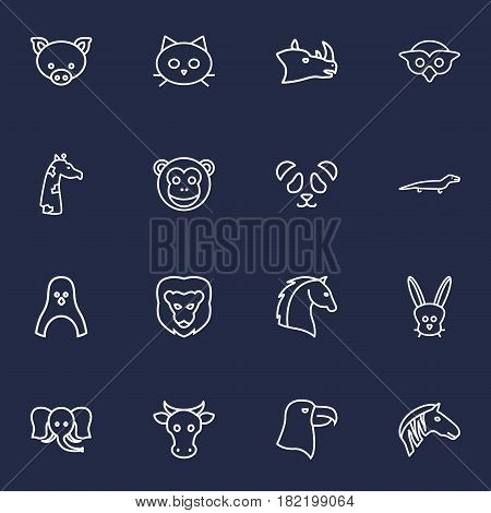 Set Of 16 Beast Outline Icons Set.Collection Of Penguin, Mammal, Rabbit And Other Elements.