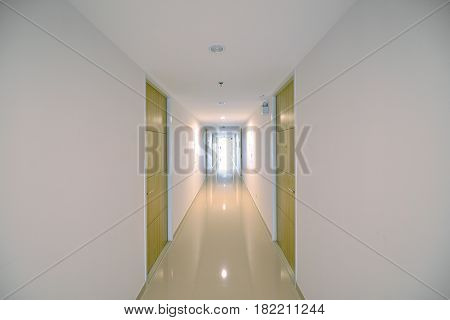 Condo Corridor With Wooden Doors In Condominium, Modern Design