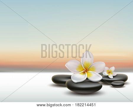 Vector white Plumeria flower with black zen spa stones on sunset background