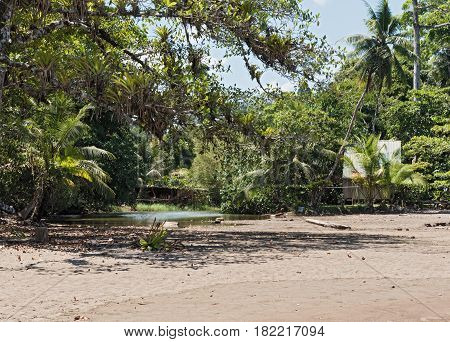 Small lagoon on the beach of Drake in the province of Puntarenas, Costa Rica