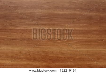 Boards and logs close-up. Different types of wood. For the background and your projects.