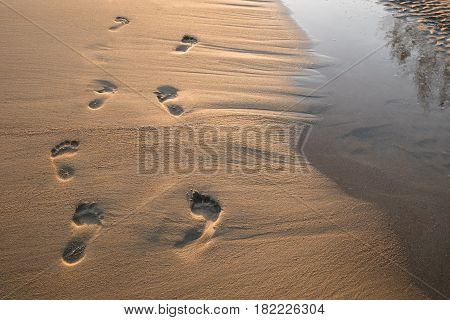 Footsteps in the sand at sunset. Beautiful sandy tropical beach with footprints on the shore background.