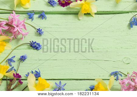 the spring flowers on green wooden background
