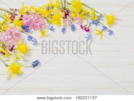 the spring flowers on white wooden background
