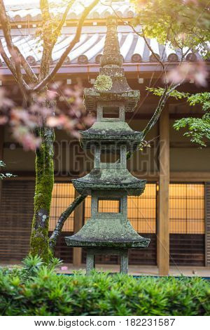 Japan Nature Park With Stone Lantern. Japanese Garden With Colorful Red Maple In Autumn Season Trave