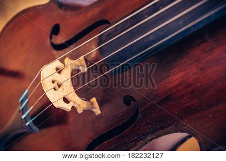 Close-up of cello strings, classical music concept