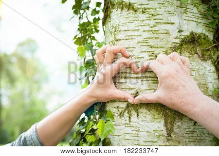Old and young hands forming heart shape