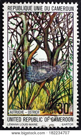 CAMEROON - CIRCA 1977: a stamp printed in Cameroon shows Ostrich Struthio Camelus bird circa 1977