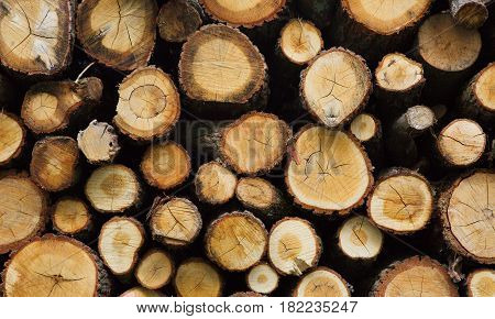 Firewood in the stack Background texture. Lumber sawn logs closeup