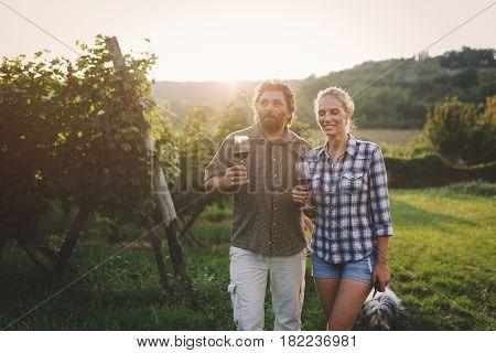 Romantic couple tasting wine in vineyard before harvesting