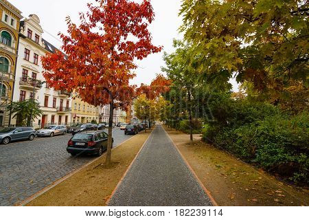 COTTBUS GERMANY - OCTOBER 18 2016: Autumn Street. Cottbus is a university and the second-largest city in federal state of Brandenburg.