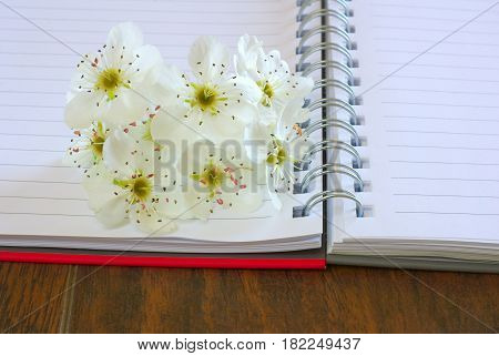 Love lyrics diary. Open blank notebook with spring flower blossom. Romance message letter book. Copy space text place.