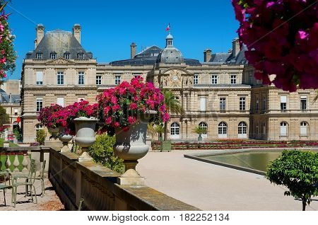 Jardin du Luxembourg and Palace at summer in Paris, France