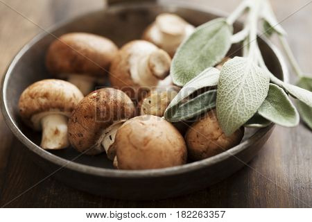 Fresh brown button mushrooms with a sprig of sage