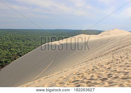 Sand dunes of the Dune de Pilat, France