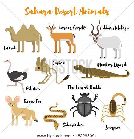 Vector flat style set of desert wild animals. Icon for web. Isolated on white background.