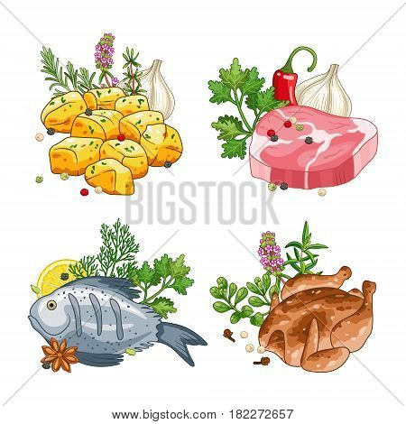 Food and meal vector set in cartoon style. Meat steak, chicken, fish and potatoes illustration with herbs and spices. Isolated on white.