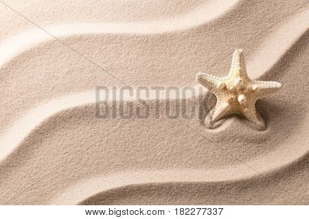 Starfish or sea star fish on the rippled sand of a tropical beach.