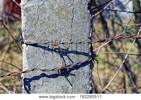 Barbed wire on a gray concrete pillar